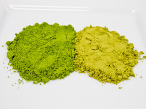 matcha_versus_green_tea