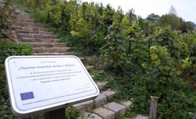 vinarska-stezka-featured