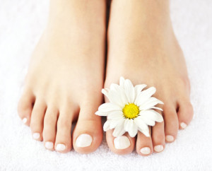 http://www.dreamstime.com/royalty-free-stock-image-female-feet-pedicure-image21747846