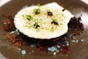 Cerviche of Hokkaido Scallops with OsciŐtre Caviar