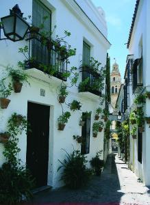 Cordoba-Casa de las Flores-1400026A