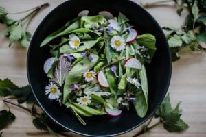 salat-jarni-bylinky