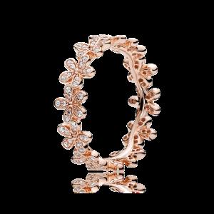 Náramek, Pandora Rose, info o ceně v obchodě.