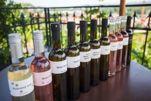 Vina z vinice sv Klary 2017