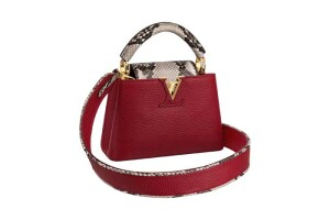 Capucines Mini in rouge carmin taurillon and phython leather (2)