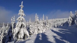 Dolni Morava_zima 1